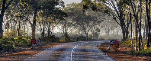 Highway 1 photo