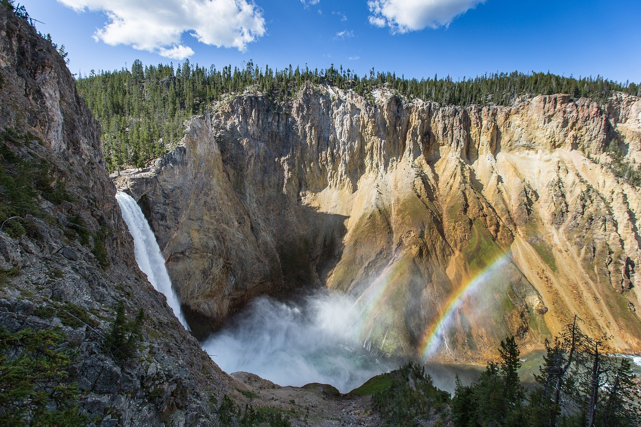 Yellowstone park photo