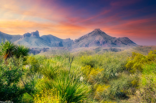 Big Bend photo